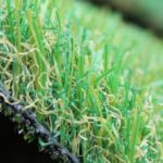 artificial grass petgrass 55 1398