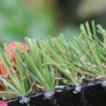 artificial grass star grass 35 1406 1