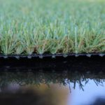 turf star grass 351411
